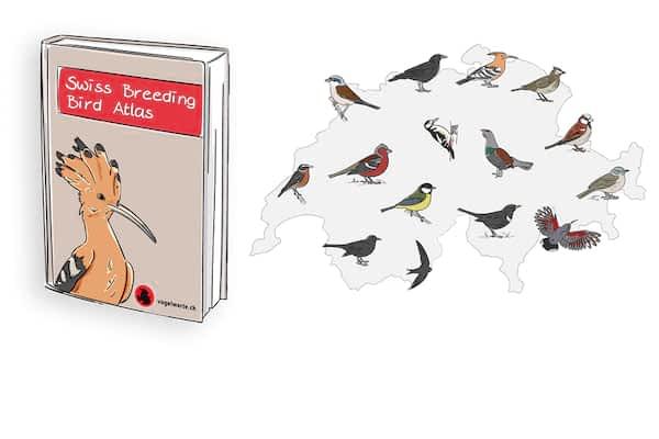 New: Swiss Breeding Bird Atlas