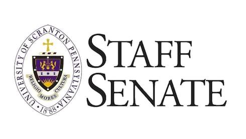 Meet the New Staff Senators banner image