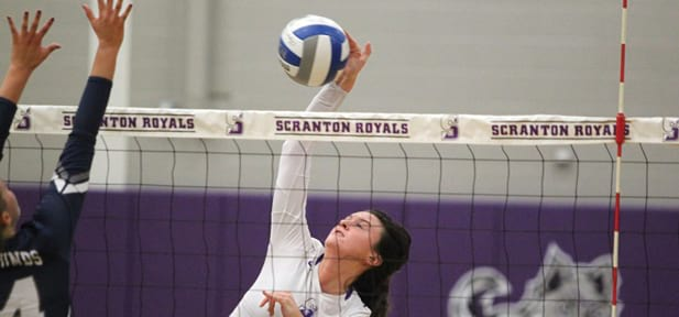 Volleyball Returns to Landmark Conference Playoffs