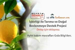 Kendi Ağacınızdan Doğal Meyveler Yemek İster misiniz ?