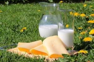 Taze Peynirdeki Tehlike: BRUSELLOZ