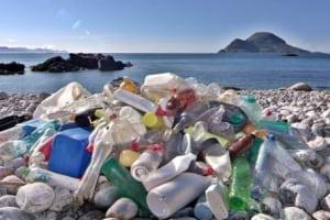 Siz Hiç Plastik Yediniz Mi?