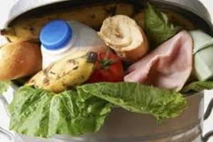 Gıda Kayıp ve Atıkları