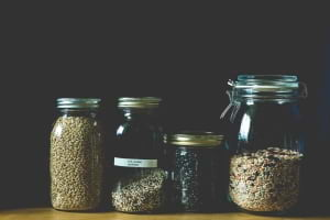 Besleyici Tohumlar