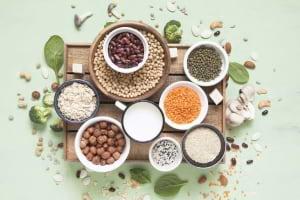 Gelecekte İhtiyaçların Karşılanması: Sürdürülebilir Protein Kaynakları