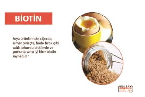 Hangi Gıdalarda Biotin Bulunur ?