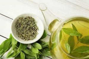 Yeşil Çayın Sağlığımıza Faydaları Nelerdir ?