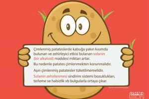 Aşırı Çimlenmiş Patatesler Tüketilmemelidir. Peki Neden?