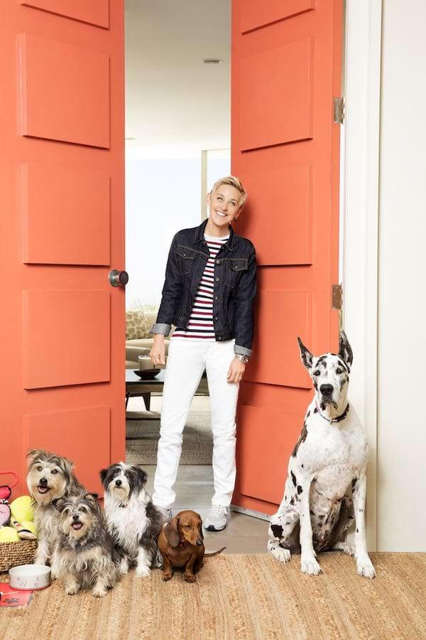 Ellen and Her Dogs Love the ED Ellen DeGeneres Pet Collection: