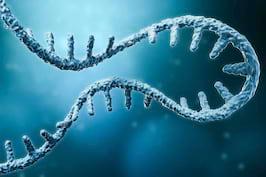 Noua tehnologie ARNm, utilă în crearea unor medicamente pentru bolile de inimă și cancer