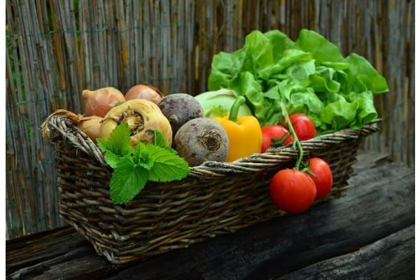 dieta vegetariana slabire rapida