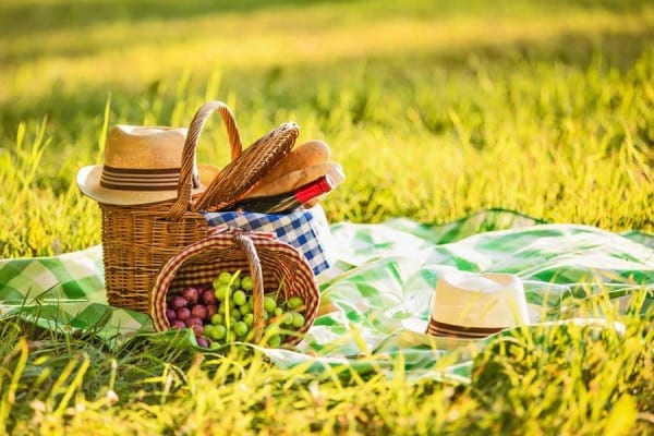 Activitati de weekend: ce sa pui in cosul pentru picnic