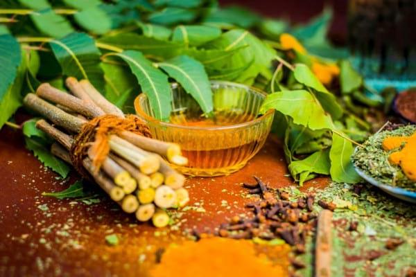 Plante benefice pentru sănătatea orală