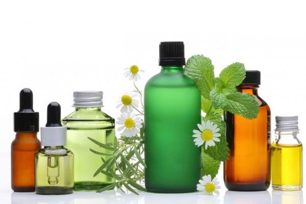 Antihipertensive din natura: 8 plante care scad tensiunea arteriala
