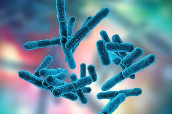 Probioticele pot reduce inflamatia rinichilor la pacientii cu lupus