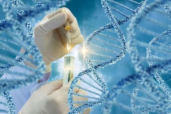Testarea genetica, importanta in cazul dislipidemiilor