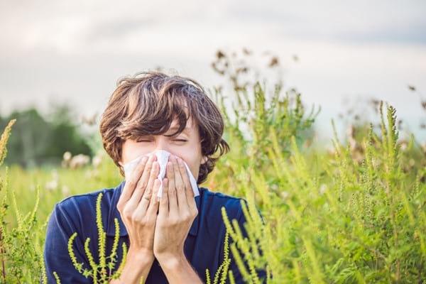 Despre alergii