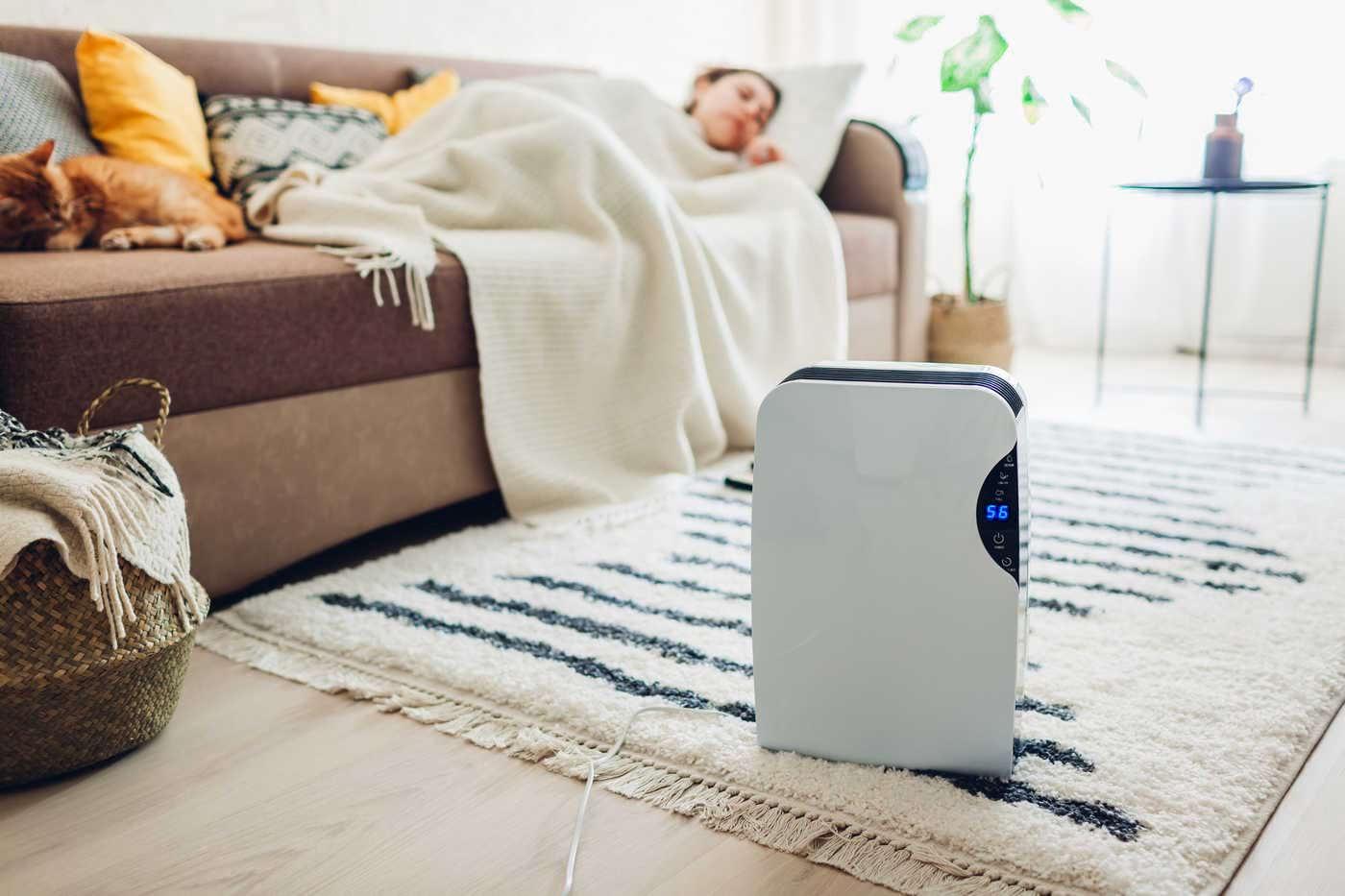 Soluții pentru aerul uscat din casă