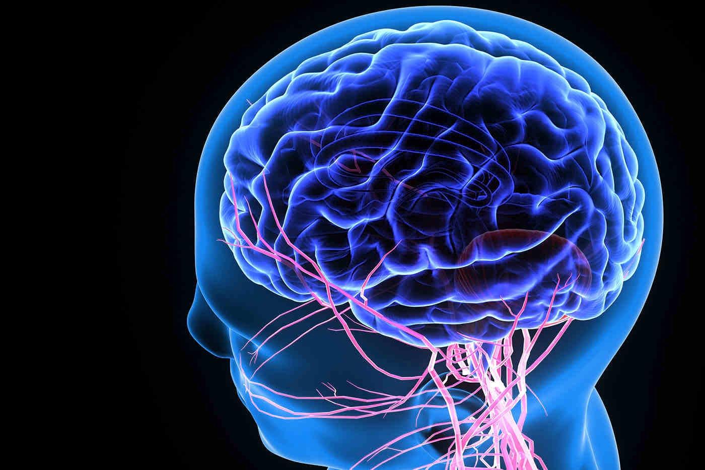 Creierul poate funcționa ca un rezervor pentru virusul HIV [studiu]