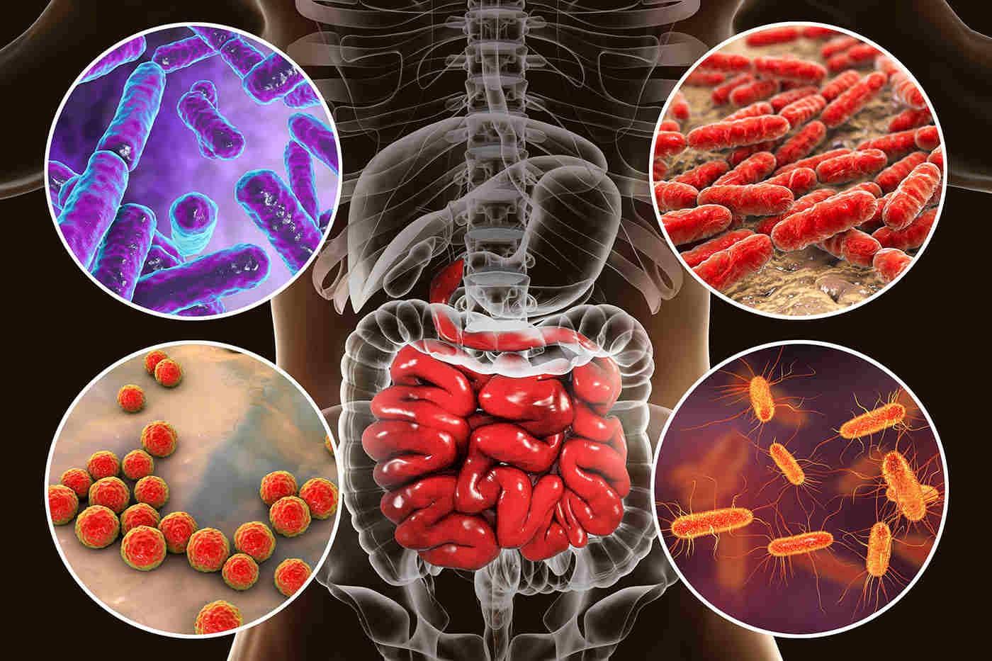 Riscul de diabet, preconizat de o bacterie din intestine? [studiu]