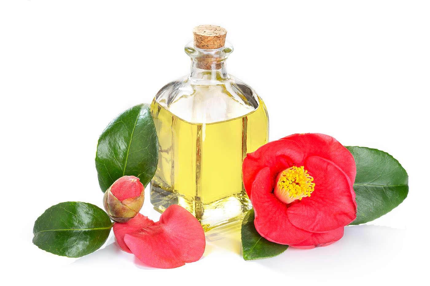 Uleiul de Camellia, ingredient esențial în ritualul de îngrijire japonez