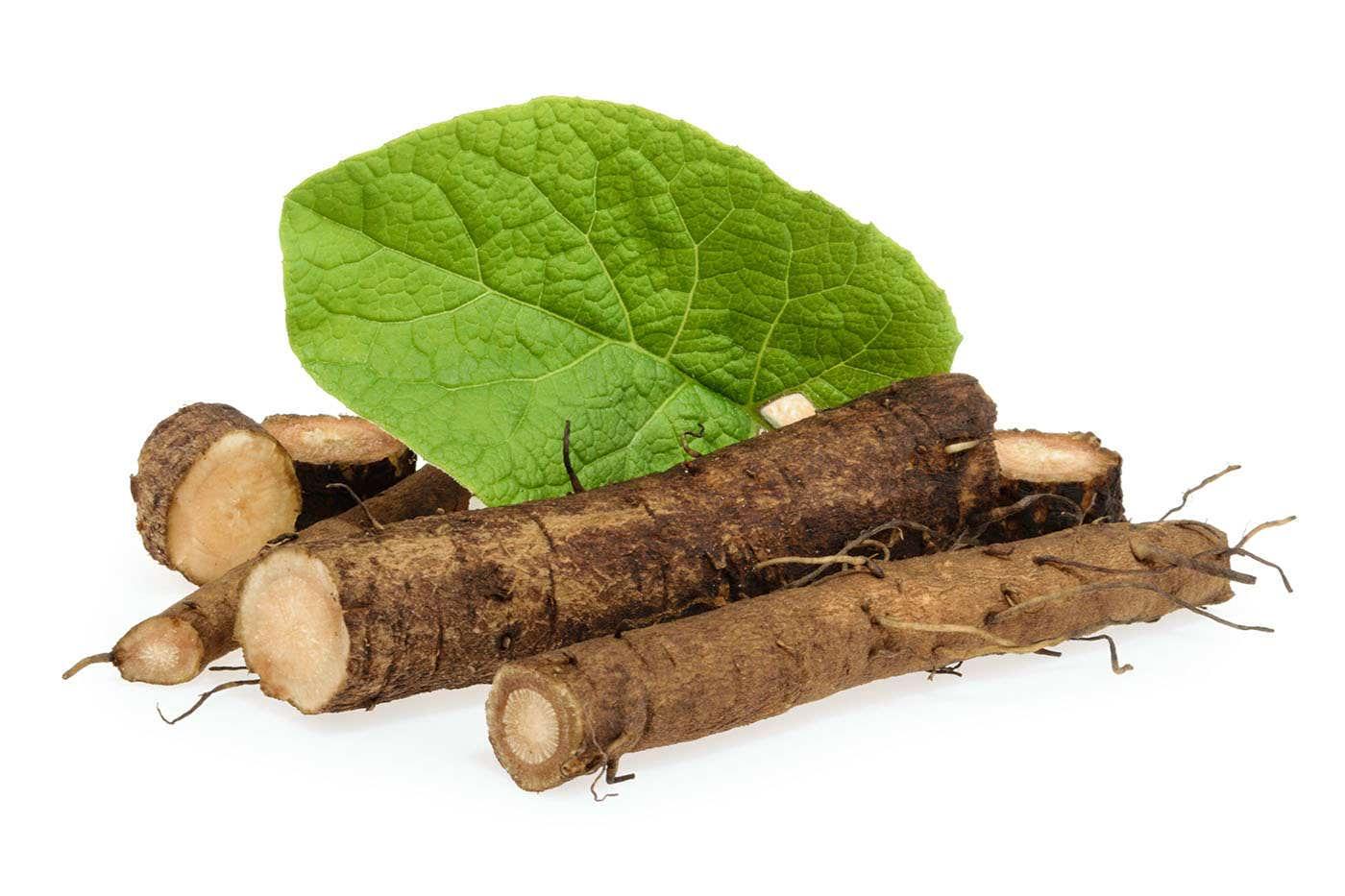 Rădăcina de brusture: 6 beneficii pentru sănătate și piele