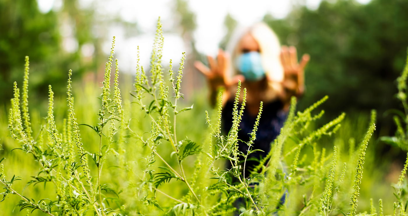 Alimentele care pot agrava alergia la polen