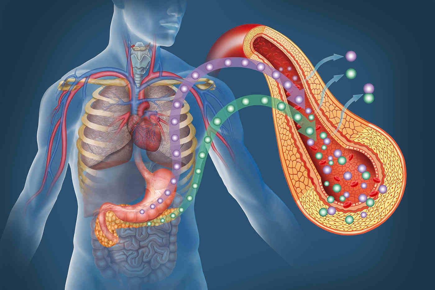 Diabetul de tip 1: relația dintre răspunsul la interferon și infecțiile virale