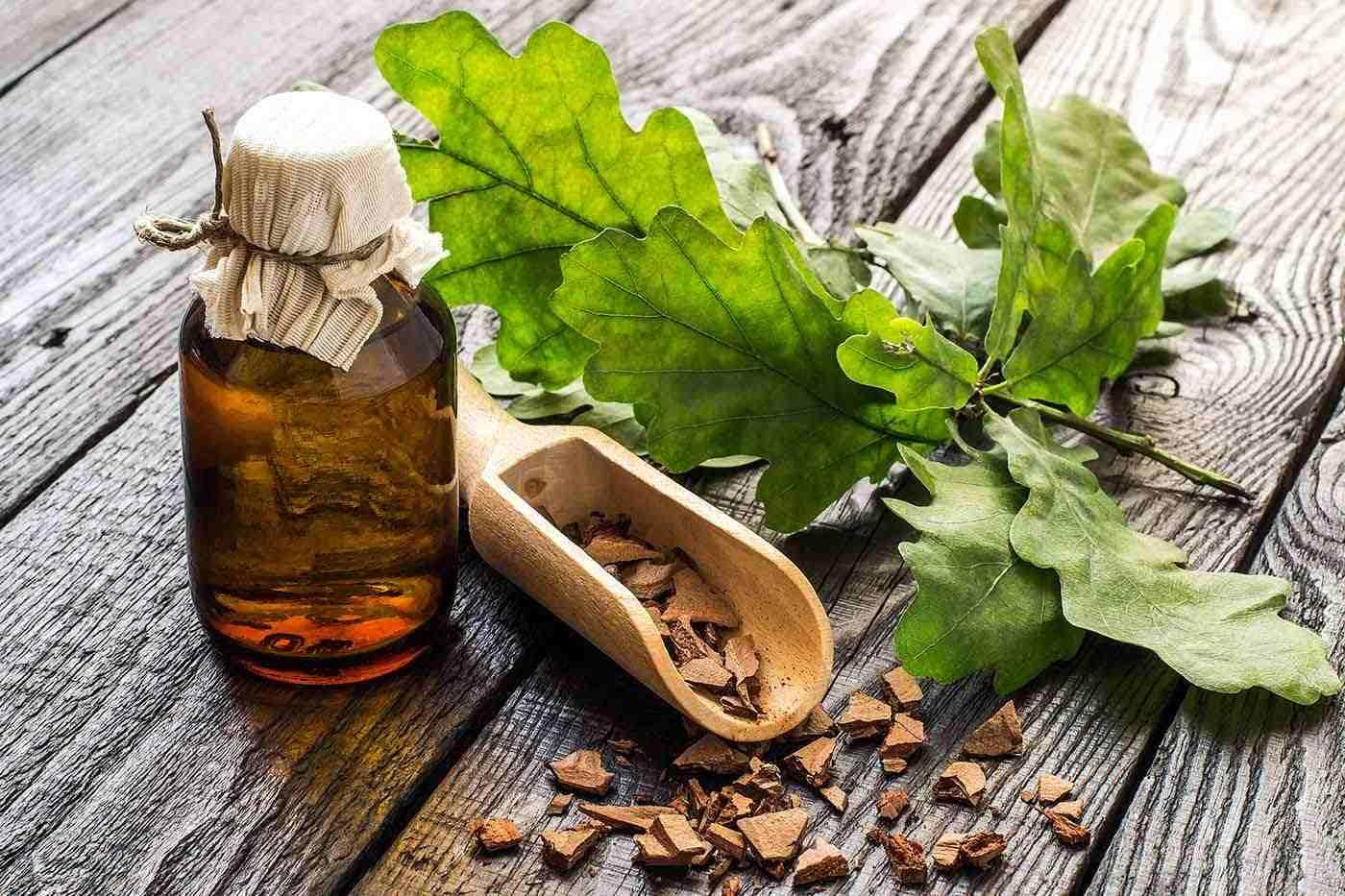 Remediile cu scoarță de stejar, utile în combaterea inflamației