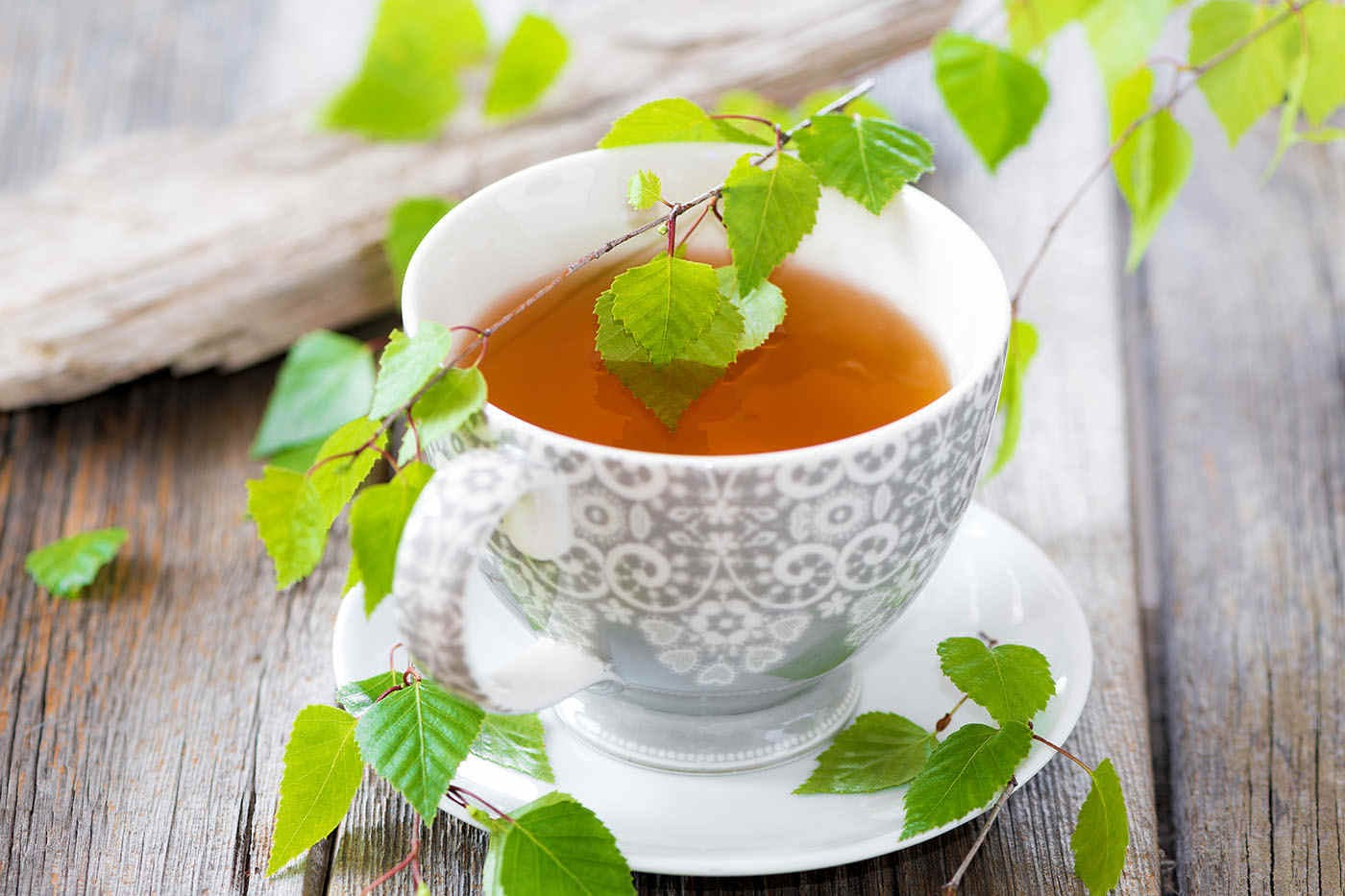 Ceai din frunze de mesteacăn: beneficii și proprietăți