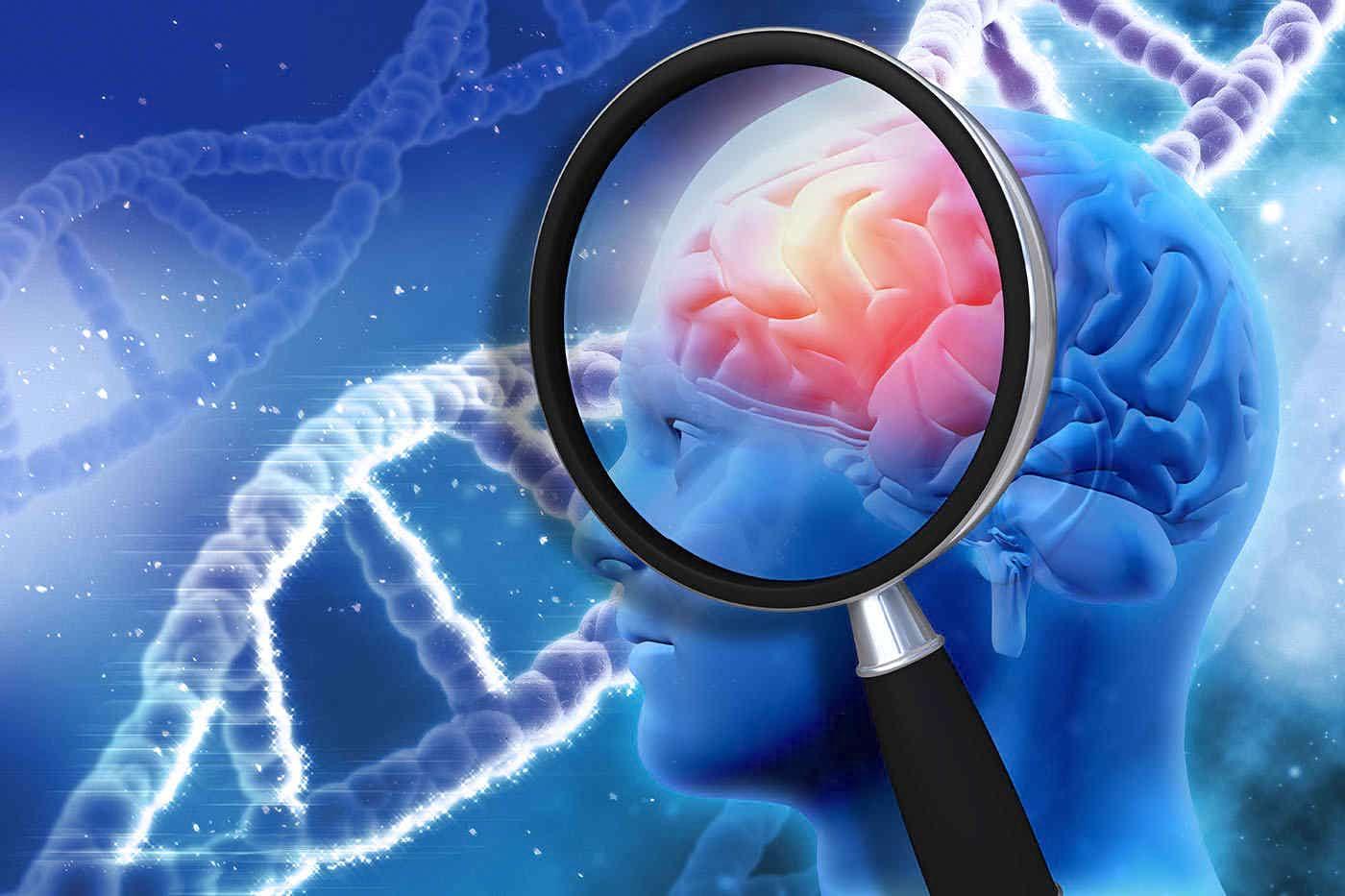 conexiunea dintre creier și vedere)