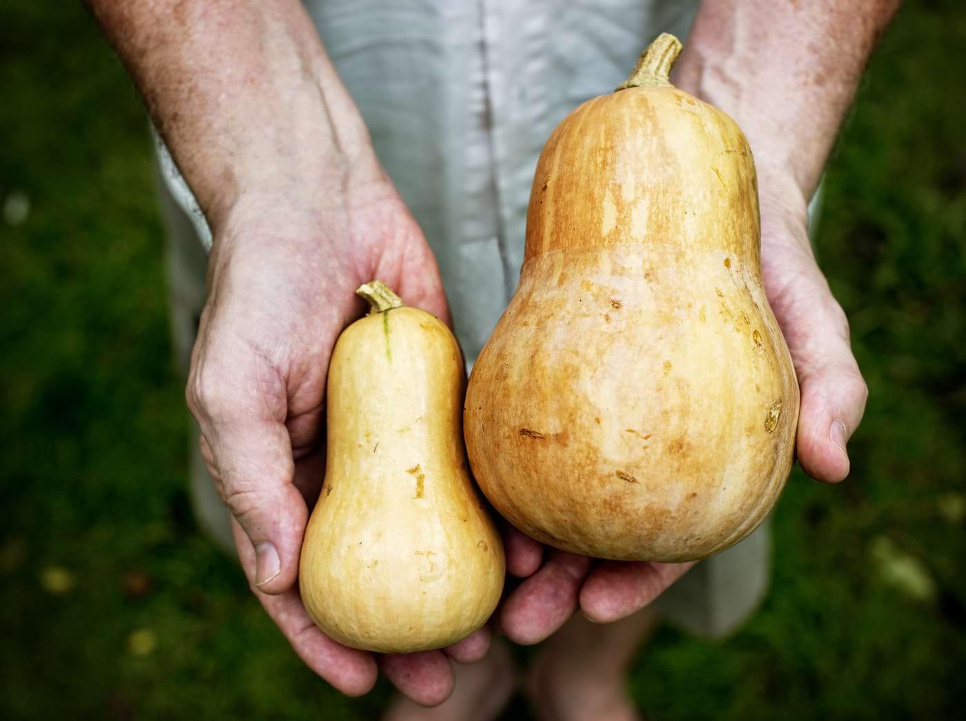 Alimente care conțin mai mult potasiu decât bananele