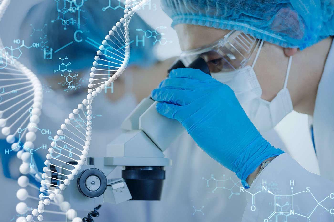Oasele și vasele de sânge ar putea fi regenerate cu ajutorul unui biomaterial