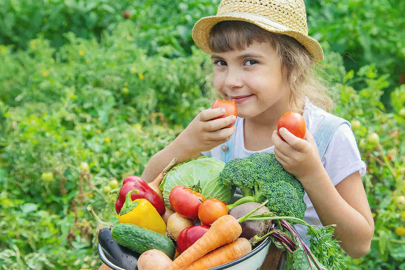 Produsele alimentare ecologice influențează funcția cognitivă a copiilor (studiu)