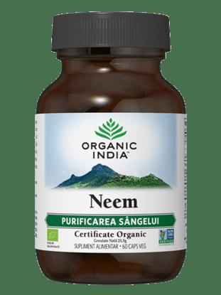Imagine ORGANIC INDIA Neem | Agent natural împotriva fungilor și bacteriilor