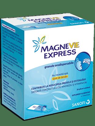 Foto de MAGNEVIE EXPRESS GRAN ORODISP 20PL