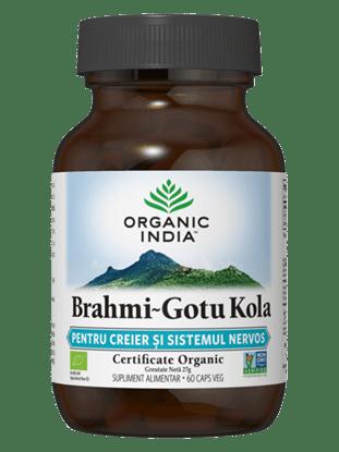 Picture of ORGANIC INDIA Brahmi-Gotu Kola | Creier și Sistem Nervos