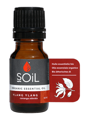 Picture of SOiL Ulei Esential Ylang Ylang (Cananga odorata) 100% Certificat Organic