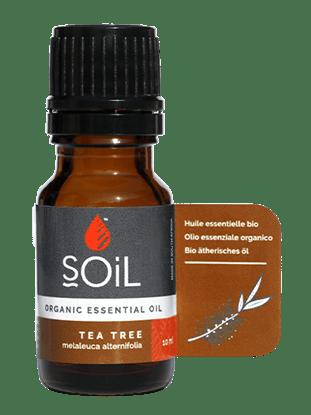 Picture of SOiL Ulei Esential Tea Tree 100% Certificat Organic